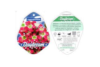 Plant labels1