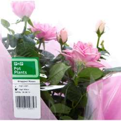 label-products (1)